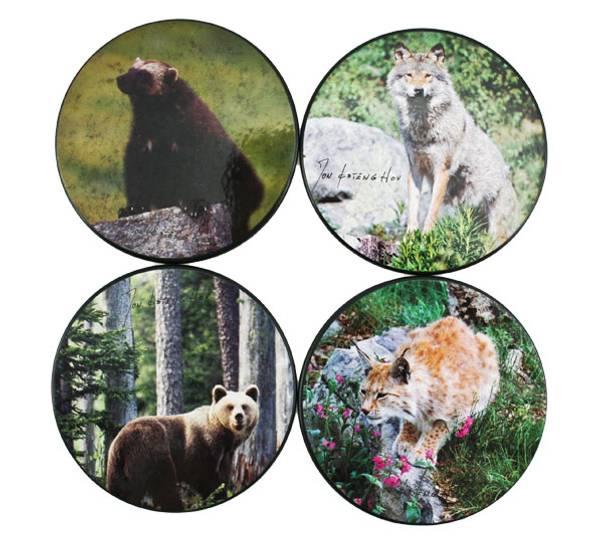 Bilde av Glassbrikker Villmarksserien rovdyr.