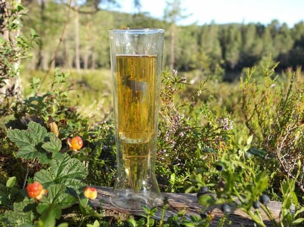 Bilde av Silver Moose Øl Glass
